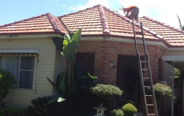 Clay roof cleaning service